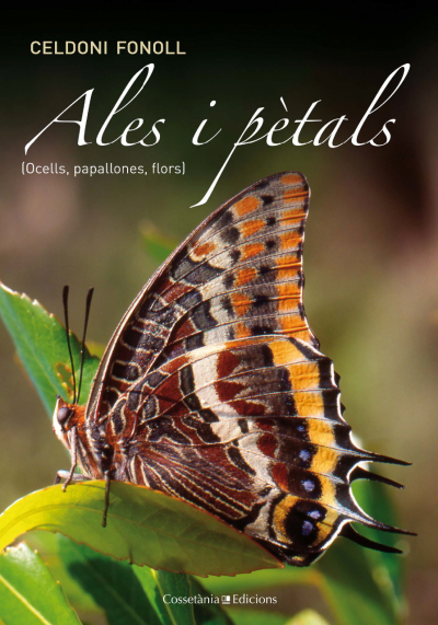 Ales i pètals [Ocells, papallones, flors]